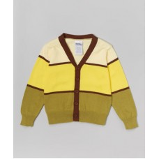 Toddler Boy Yellow and Green Colorblock Cardigan Size 3